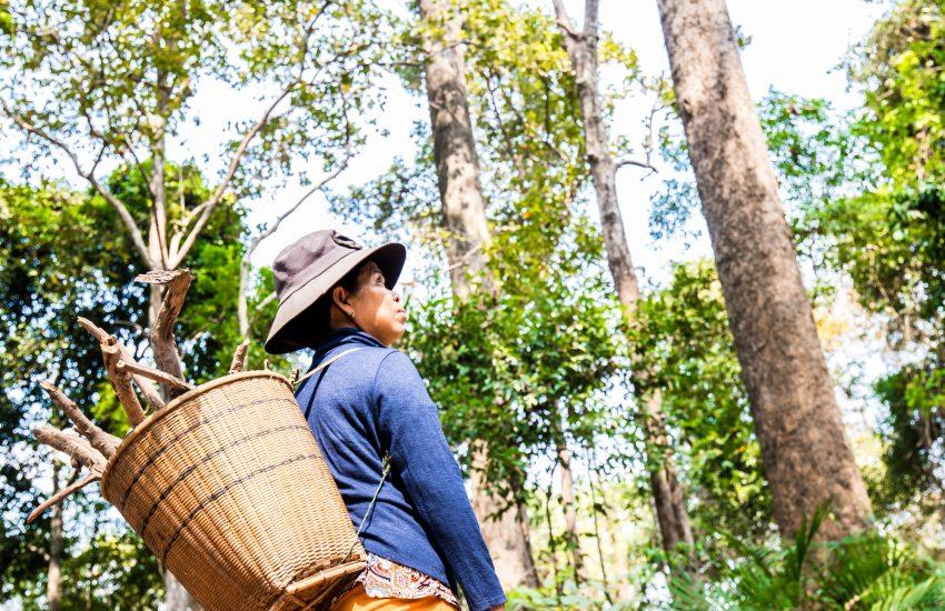 Boerin werkend in het bos