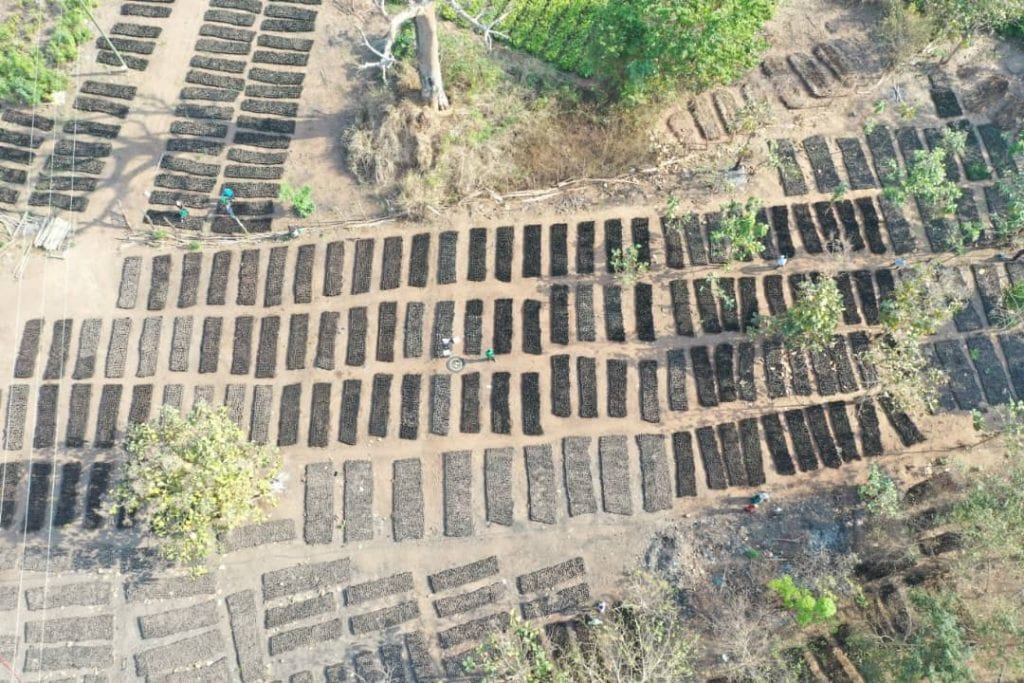 Drone shot from tree nursery. Photo credit: Tropenbos International